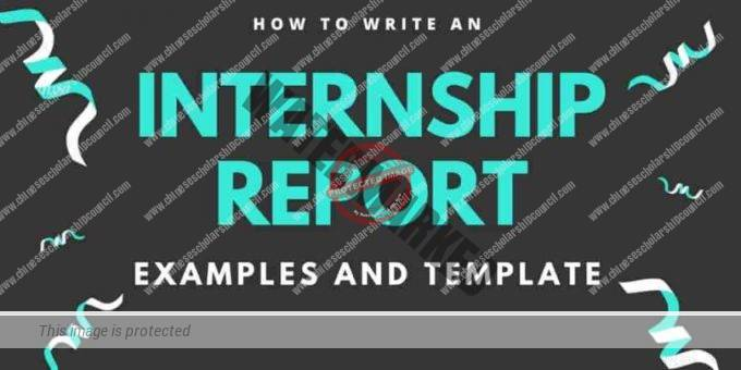 Internship Final Report Sample 2019 Updated