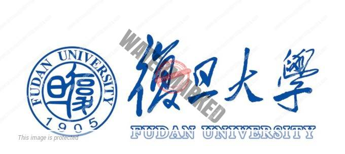 CSC Result of Fudan University
